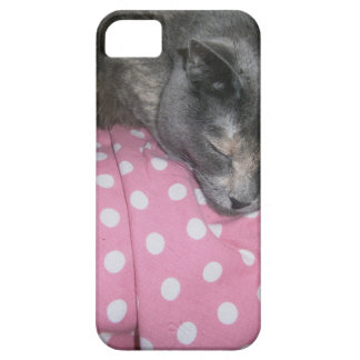 Capa Barely There Para iPhone 5 Produtos do gato