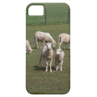 Capa Barely There Para iPhone 5 Rebanho dos carneiros