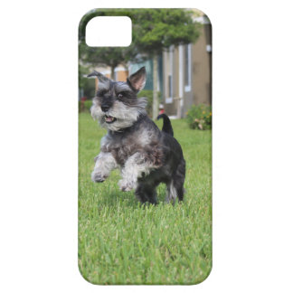 Capa Barely There Para iPhone 5 Schnauzer, alegria