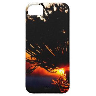 Capa Barely There Para iPhone 5 Special do nascer do sol