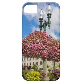 Capa Barely There Para iPhone 5 Suspensão e plantas Potted em Lynden Washington