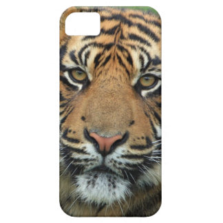 Capa Barely There Para iPhone 5 Tigre adulto
