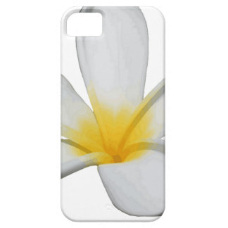 Capa Barely There Para iPhone 5 Uma única flor do Plumeria isolada