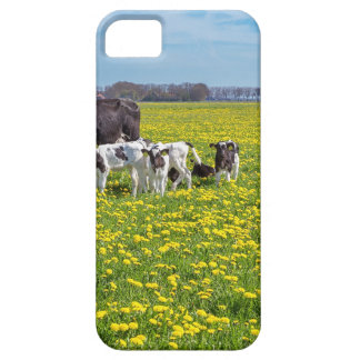 Capa Barely There Para iPhone 5 Vaca com as vitelas que pastam no prado com