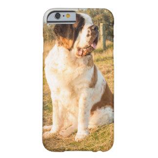 Capa Barely There Para iPhone 6 Cão de St Bernard