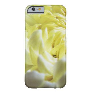 Capa Barely There Para iPhone 6 Caso Queda-Temático - close up do crisântemo