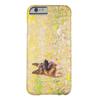 Capa Barely There Para iPhone 6 German shepherd em flores do primavera