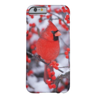 Capa Barely There Para iPhone 6 Homem cardinal do norte, inverno, IL