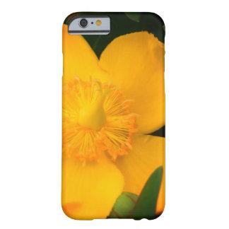 Capa Barely There Para iPhone 6 iPhone da flor/caixa amarelos do iPad