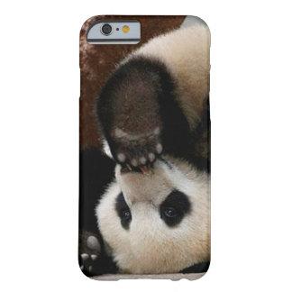Capa Barely There Para iPhone 6 Pandas do bebê que jogam - panda bonito da panda