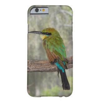 Capa Barely There Para iPhone 6 Pássaro do abelha-comedor do arco-íris, Austrália