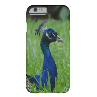 Capa Barely There Para iPhone 6 Pavão dos azuis marinhos