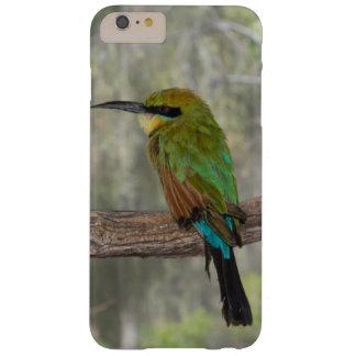 Capa Barely There Para iPhone 6 Plus Pássaro do abelha-comedor do arco-íris, Austrália