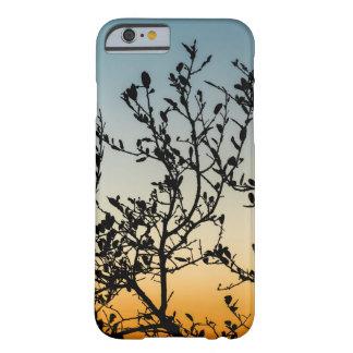 Capa Barely There Para iPhone 6 Por do sol de Austin no inverno