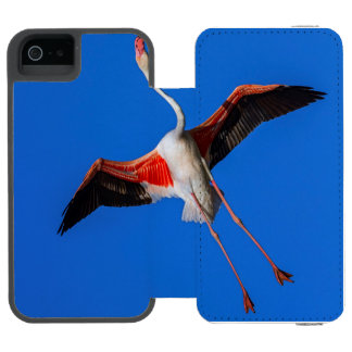 Capa Carteira Incipio Watson™ Para iPhone 5 Maior flamingo, roseus do phoenicopterus