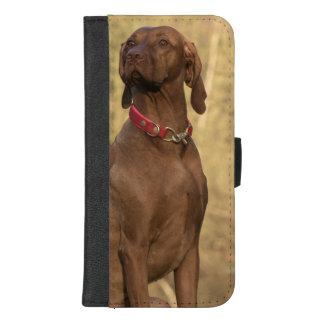Capa Carteira Para iPhone 8/7 Plus Cão ostentando bonito de Vizsla