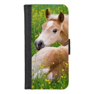 Capa Carteira Para iPhone 8/7 Potro bonito do cavalo do pônei de Haflinger na