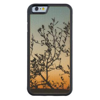 Capa De Bordo Bumper Para iPhone 6 Por do sol de Austin no inverno