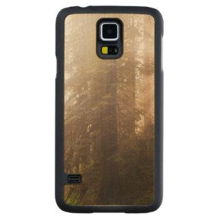 Capa De Bordo Para Galaxy S5 Árvores da sequóia vermelha na névoa da manhã com