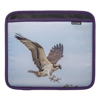 Capa De iPad Aterragem do Osprey no ninho