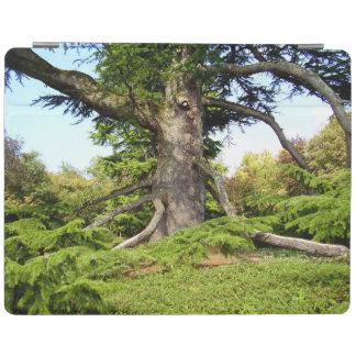 Capa de ipad da árvore de Cedro--Líbano