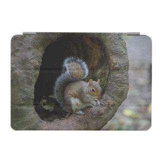 Capa de ipad do esquilo