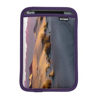 Capa De iPad Mini Dunas de areia lisas o Vale da Morte do Mesquite