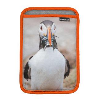 Capa De iPad Mini Exemplo do papagaio-do-mar