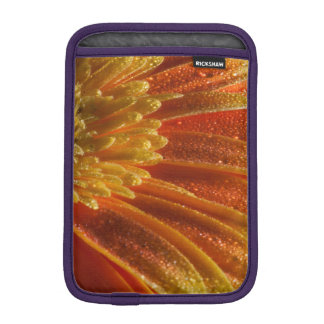 Capa De iPad Mini Flor alaranjada com pétalas coloridas