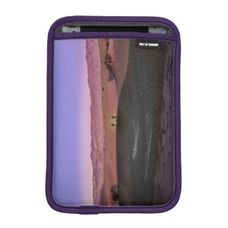 Capa De iPad Mini Parque nacional de Vale da Morte do nascer do sol