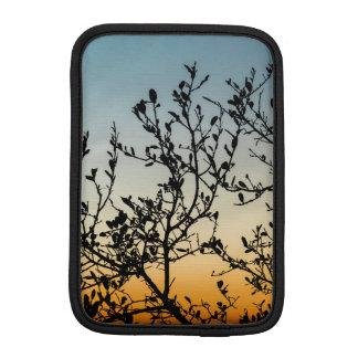 Capa De iPad Mini Por do sol de Austin no inverno