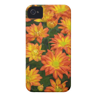 Capa de iphone 4 do impressão floral de amarelo