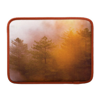 Capa De MacBook Floresta dourada da corriola