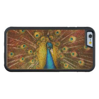 Capa De Madeira De Bordo Bumper Para iPhone 6 Animal - pássaro - pavão orgulhoso