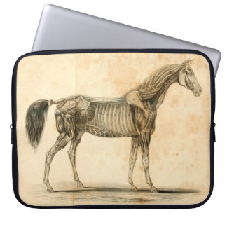 Capa De Notebook A bolsa de laptop da anatomia do cavalo