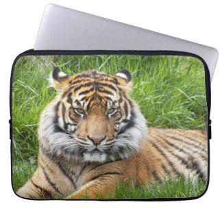 Capa De Notebook Laptop da foto do tigre de Sumatran