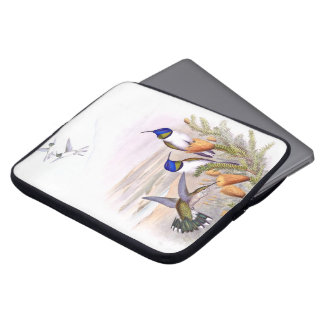 Capa De Notebook Os animais selvagens dos pássaros do colibri