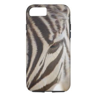 Capa de telefone da zebra