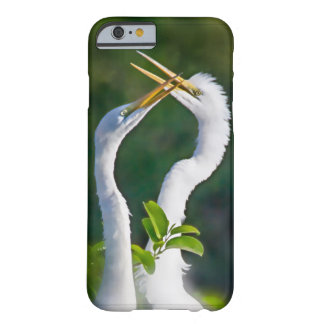 capa de telefone do amor do Egret do iphone 6/6s