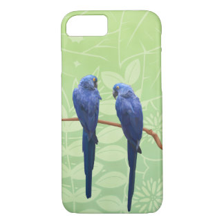 Capa de telefone do duo do Macaw do jacinto