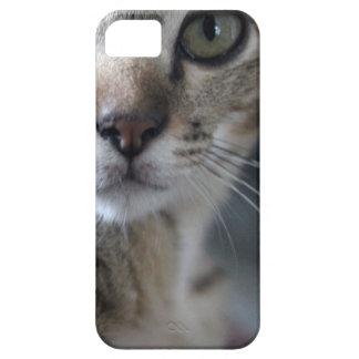 Capa de telefone do gatinho