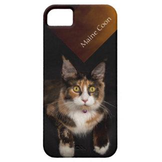 Capa de telefone do gato de Maine Coone