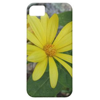 Capa de telefone floral capa para iPhone 5