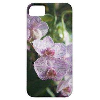 Capa de telefone floral da orquídea cor-de-rosa