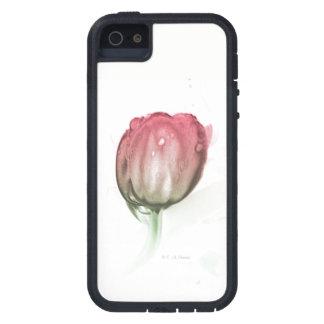 Capa de telefone vermelha da tulipa