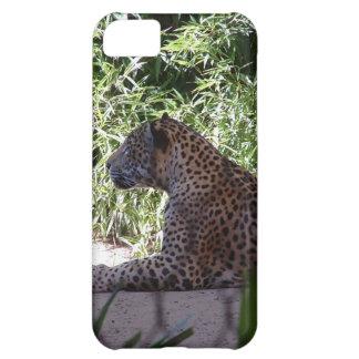 Capa do ipod touch de Jaguar Capa Para iPhone 5C