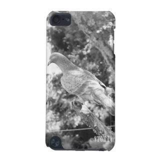 Capa do ipod touch do reino animal HD - pombo