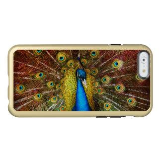 Capa Incipio Feather® Shine Para iPhone 6 Animal - pássaro - pavão orgulhoso
