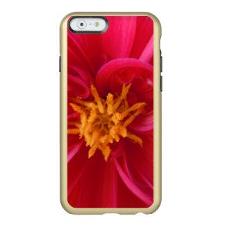 Capa Incipio Feather® Shine Para iPhone 6 Dália vermelha bonito -