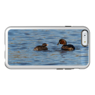 Capa Incipio Feather® Shine Para iPhone 6 Grebe pequeno e pintinho